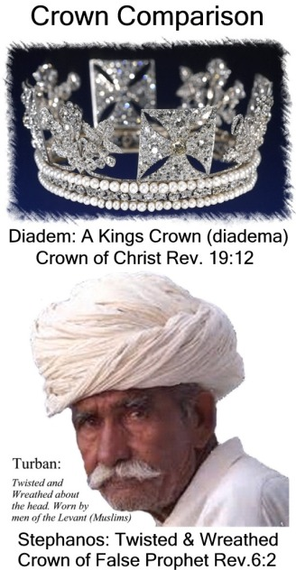 Crown Comparison Vertical