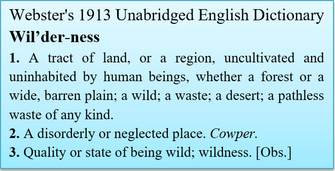 Websters Wilderness
