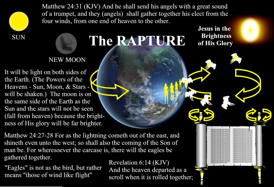 43 Rapture Image