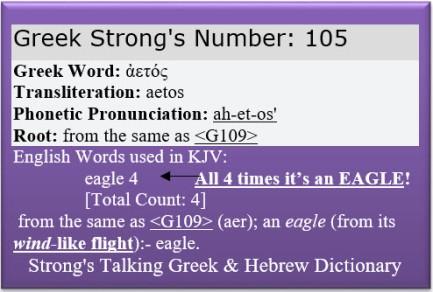 Strongs Eagle 105